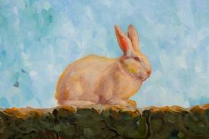 Rabbit Detail